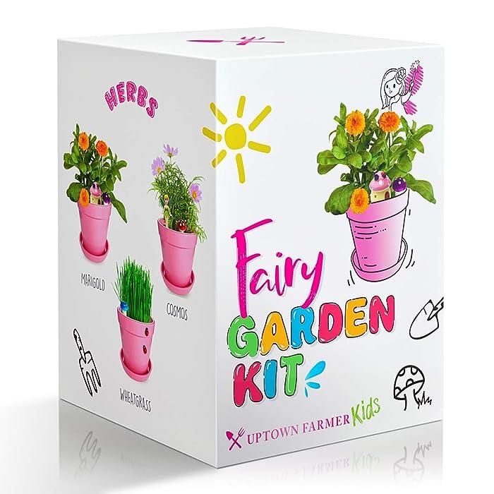 The Best Garden Fairy Sculptures Seed Packet