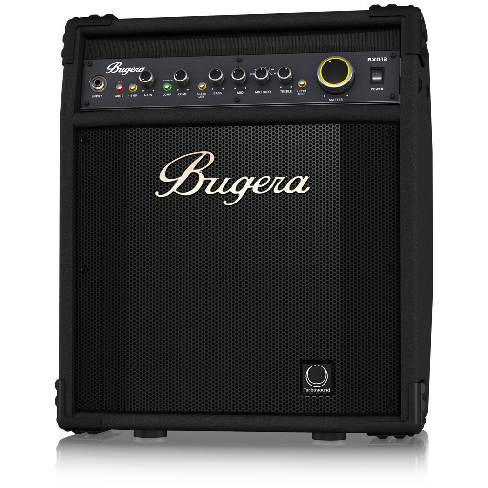 Top 10 Best Bass Combo Amp Under $200 to $300 8