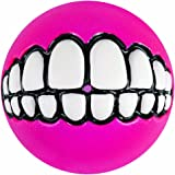 Rogz Fun Dog Treat Ball in various sizes and colors, Medium, Pink