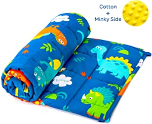 BUZIO Kids Weighted Blanket 3 lbs, Ultra Cozy Minky Fleece and Cotton Sided with Cartoon Patterns, Reversible Heavy Blanket Great for Calming and Sleeping, 36x48 inches, Blue Dinosaur Park