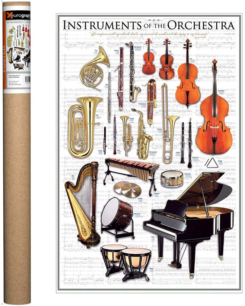 Amazon Com Eurographics Instruments Of The Orchestra Poster 36 X 24 Inch Posters Prints