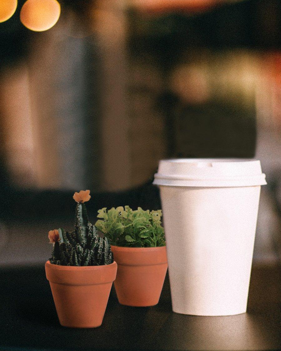 Terra Cotta Pots - 10-Set Clay Flower Pots, Mini Flower Pot Planters ...