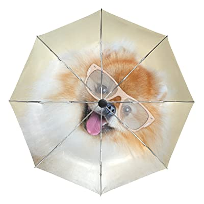 La Random Pomeranian Dog Wearing Sunglasses Custom Windproof UV Proof Automatic Umbrella Foldable Compact Travel Umbrella free shipping