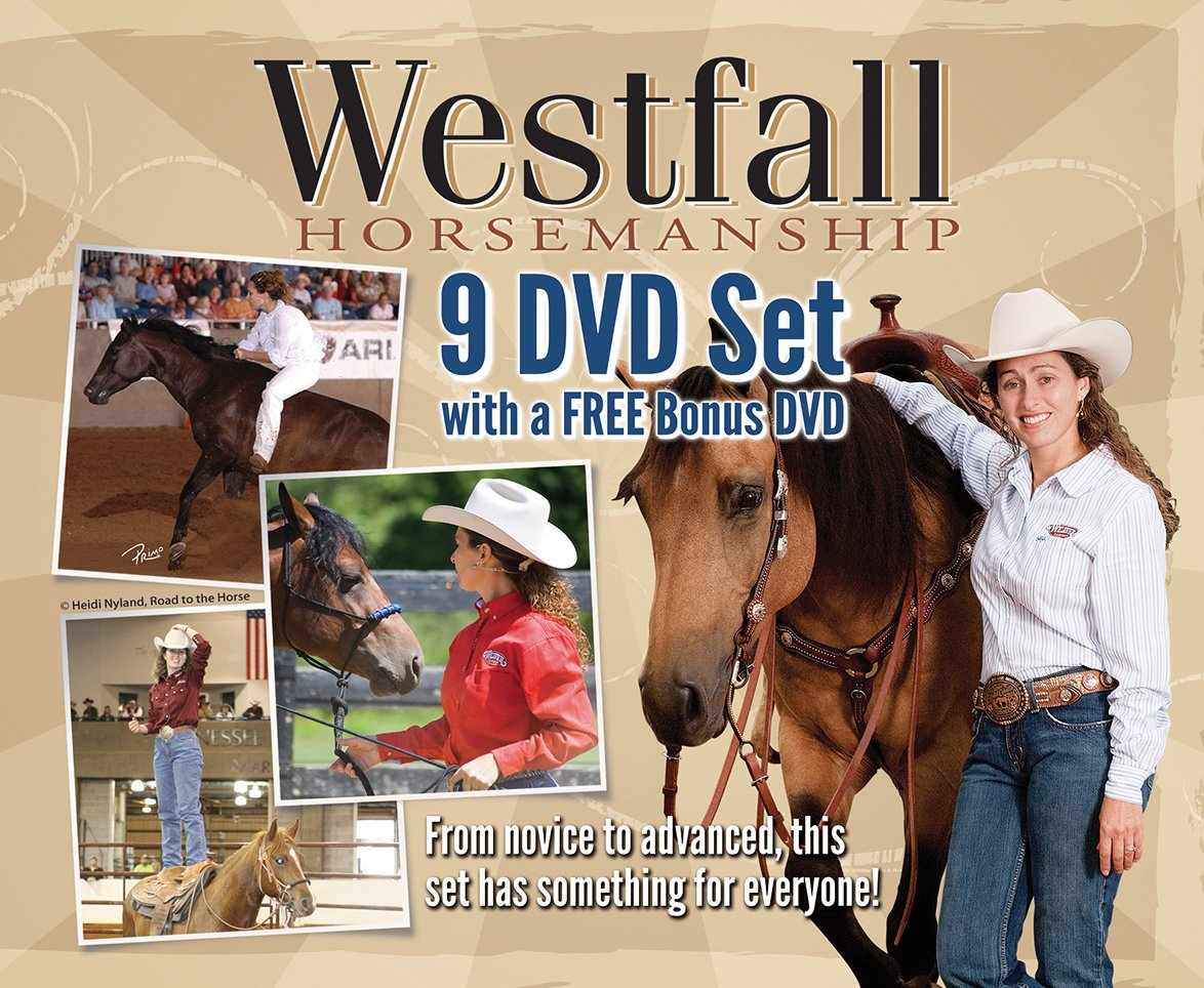 Weaver Leather Stacy Westfall 9 DVD Set with Free Bonus DVD