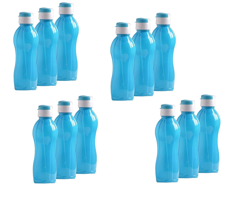 Oren Empower Food Grade, BPA-Free, Leak Proof NP Sunny Pet