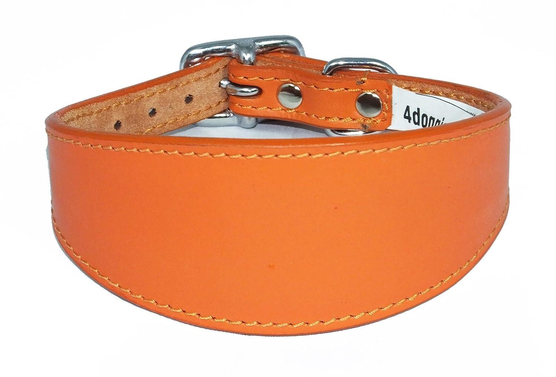 25, 4–30, 5cm Uni Orange en Cuir Collier pour Petit lévrier italien 4-30 4doggies