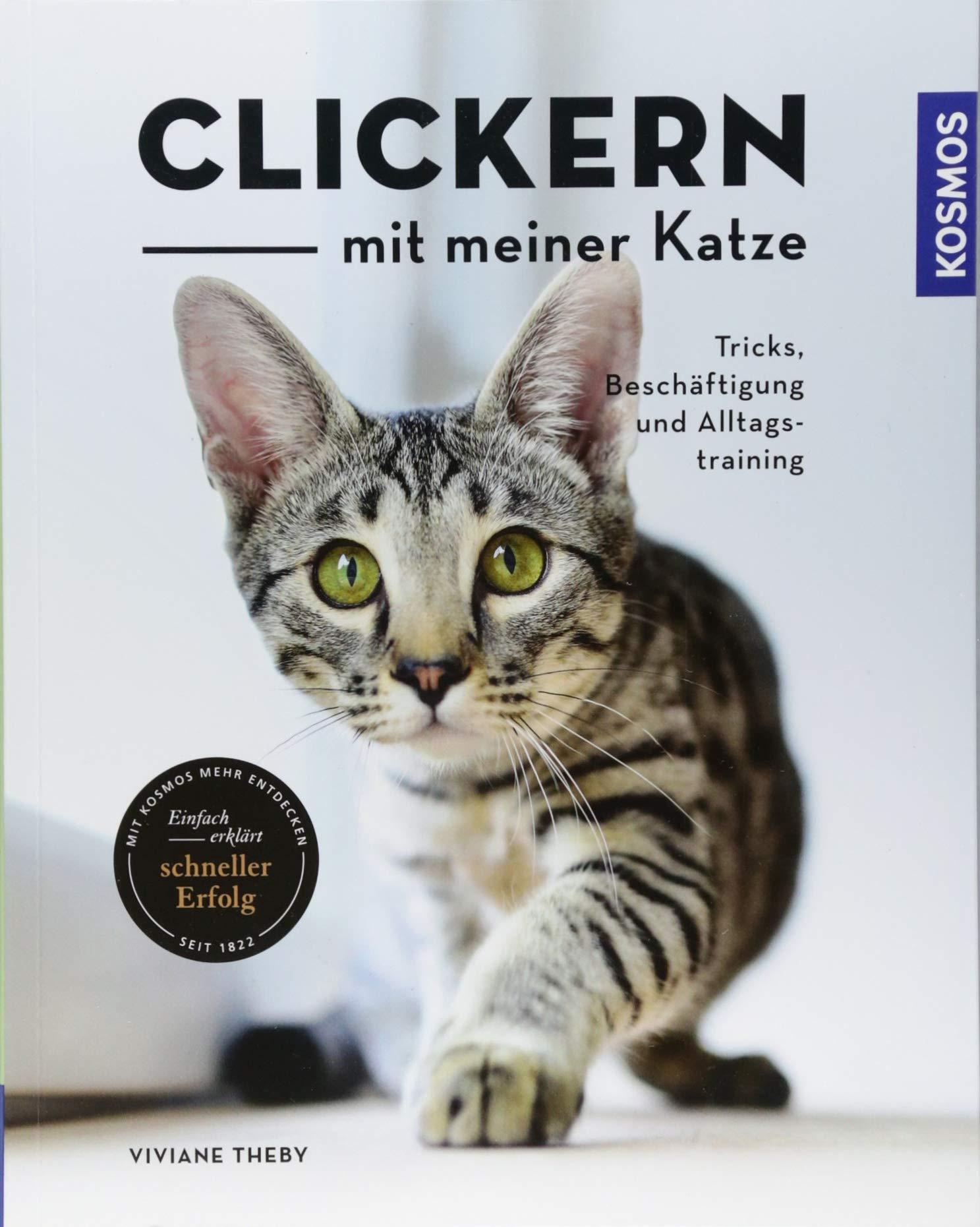 Clickern mit meiner Katze: Tricks Beschäftigung und Alltagstraining
