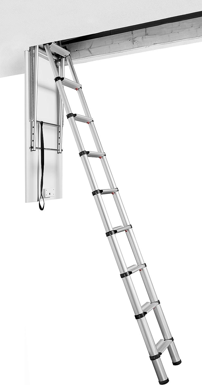 Escalera de Linea Negra 2,5-3m: Amazon.es: Bricolaje y herramientas
