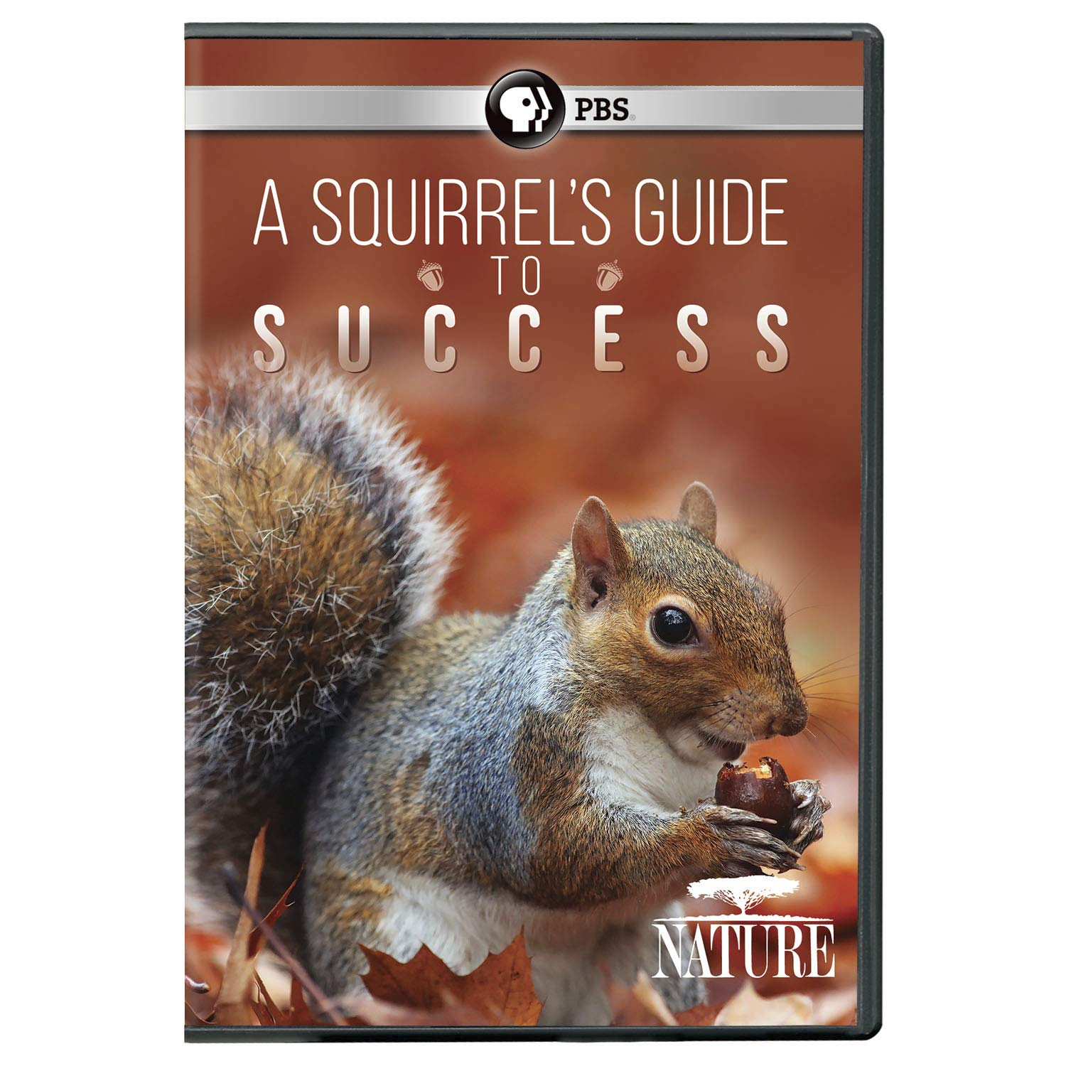 NATURE: A Squirrel's Guide to Success DVD