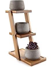 ComSaf Planta Maceta de Suculento con Marco de Bambú Gris Cerámico Paquete de 3, Cactus Maceteros de Ventana Cajas Decoración para Mesa de Comedor Regalo para Cumpleaños Boda Navidad