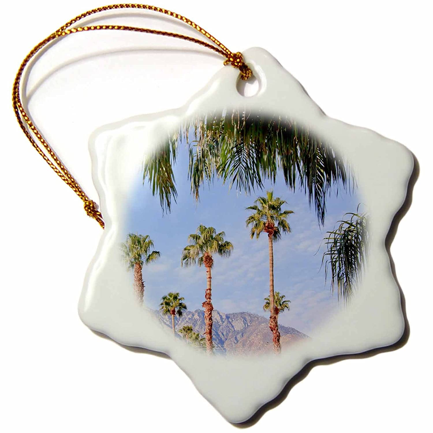 Palm Springs California Snowflake Ornament 3 3dRose Fan Trees