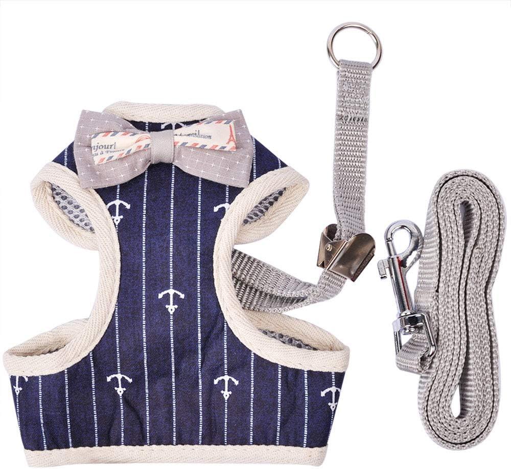 Mignon Gilet Bleue Style Gentleman avec Laisse R/églable MyfatBOSS Harnais Chat Harnais Chaton pour Chats