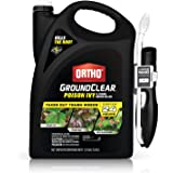 Ortho GroundClear Poison Ivy & Tough Brush Killer - Ready to Use with Comfort Wand, Poison Ivy Killer, Also Kills Poison Oak,