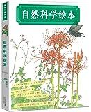 蒲蒲兰绘本馆:自然科学绘本(鸟巢+树+田野花虫)(套装共3册)