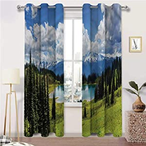 Landscape Black Out Window Curtain Pond with Evergreen Trees for Unique Home Decor - 60 Inch x 96 Inch (2 Grommet Panels)
