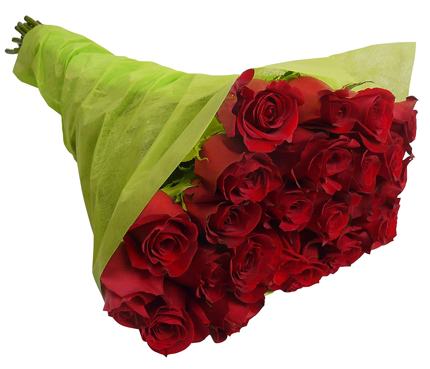 Amazon.com : Benchmark Bouquets 2 Dozen Red Roses, With Vase : Fresh ...
