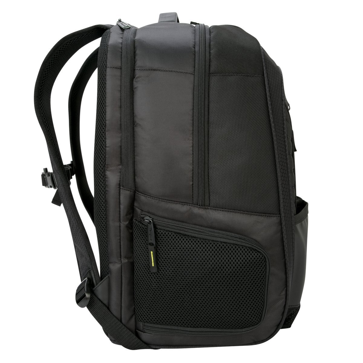fb7d178237 Amazon.com  Targus - 15.6 Work + Play Racquets Backpack  Computers    Accessories