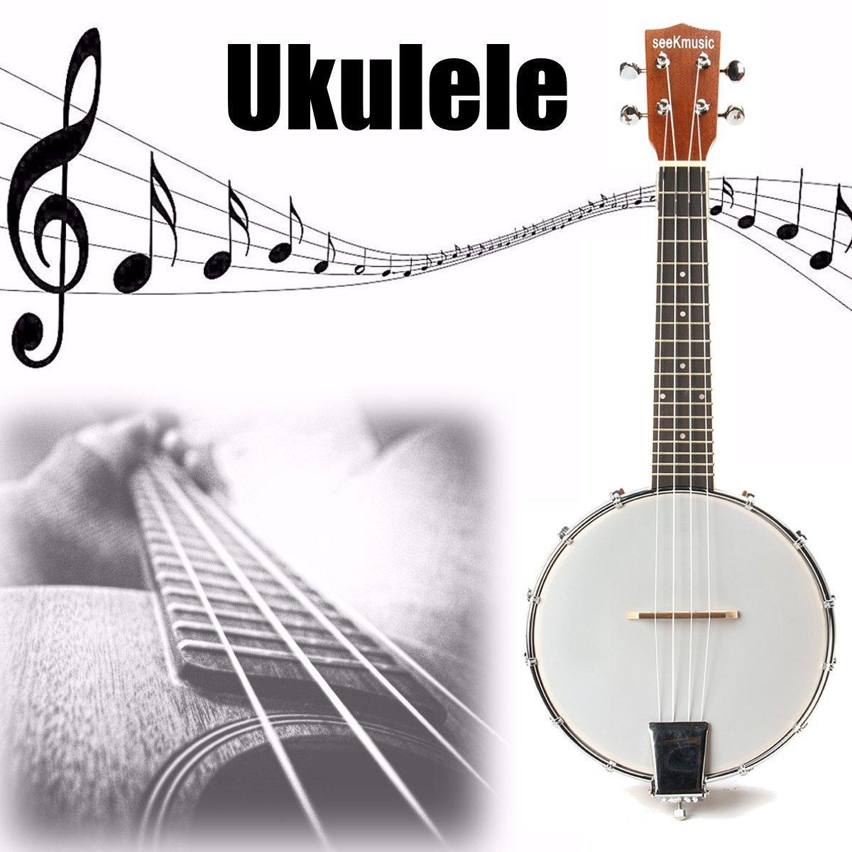 ideal für Einsteiger! Gut verarbeitetes 5-saitiges Bluegrass Banjo