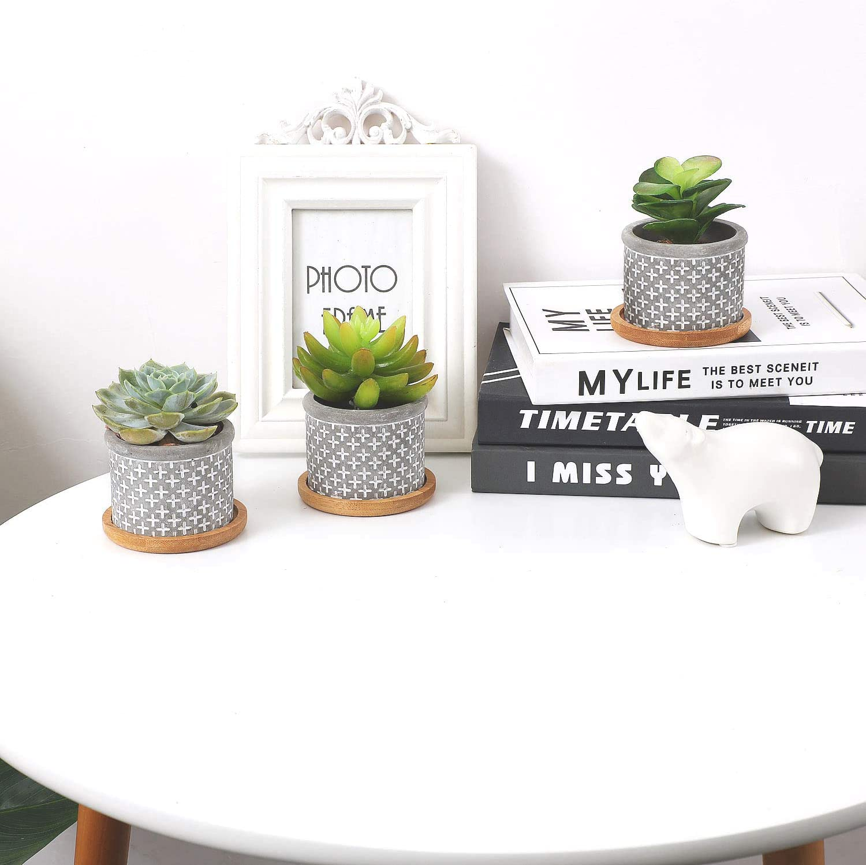 Cactus Plante Planteur de Ciment Petite Cache Pot Jardini/ère Contenant D/écoration de Maison Bureau Cadeau Anniversaire Marige T4U 6CM Pot de Succulente avec Plateau Bambou Gris Lot de 3