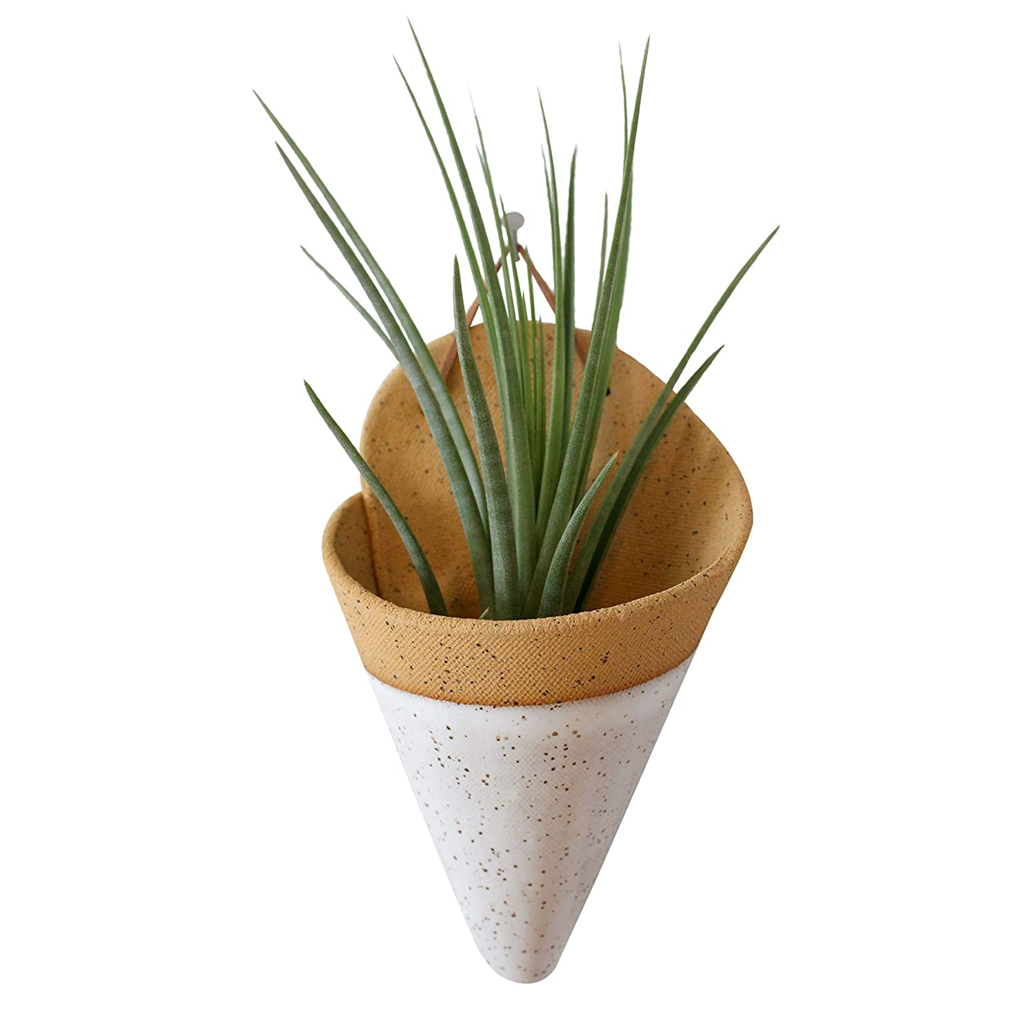 Speckled White Carter and Rose Ceramic Wall Planter Large with Air Plant