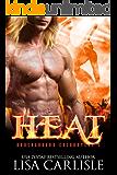 HEAT (a gargoyle shifter romance) (Underground Encounters Book 6)