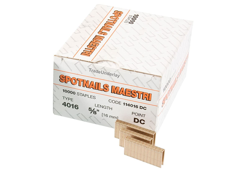 Spotnails Maestri 4020 Flooring Staples 4000/20mm X Big 10,000 Box:  Amazon.co.uk: DIY U0026 Tools