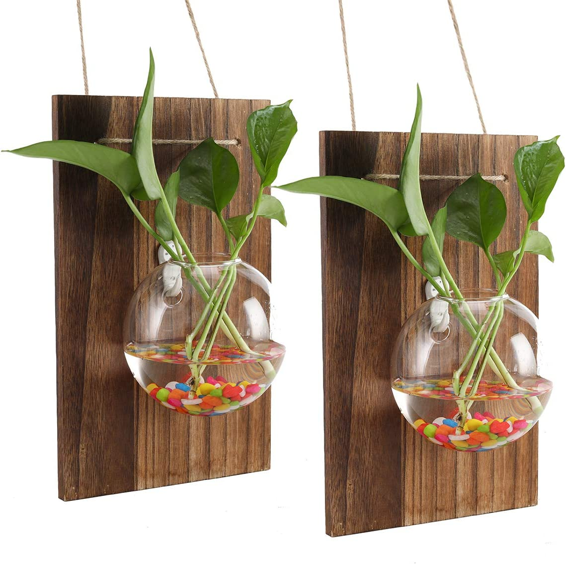 PAG Set of 2 Hanging Plant Terrariums Kit Wall Hydroponics Air Planter Holder with 2 Glass Vase and 2 Solid Wood Boards for Home Office Garden Wedding Decoration