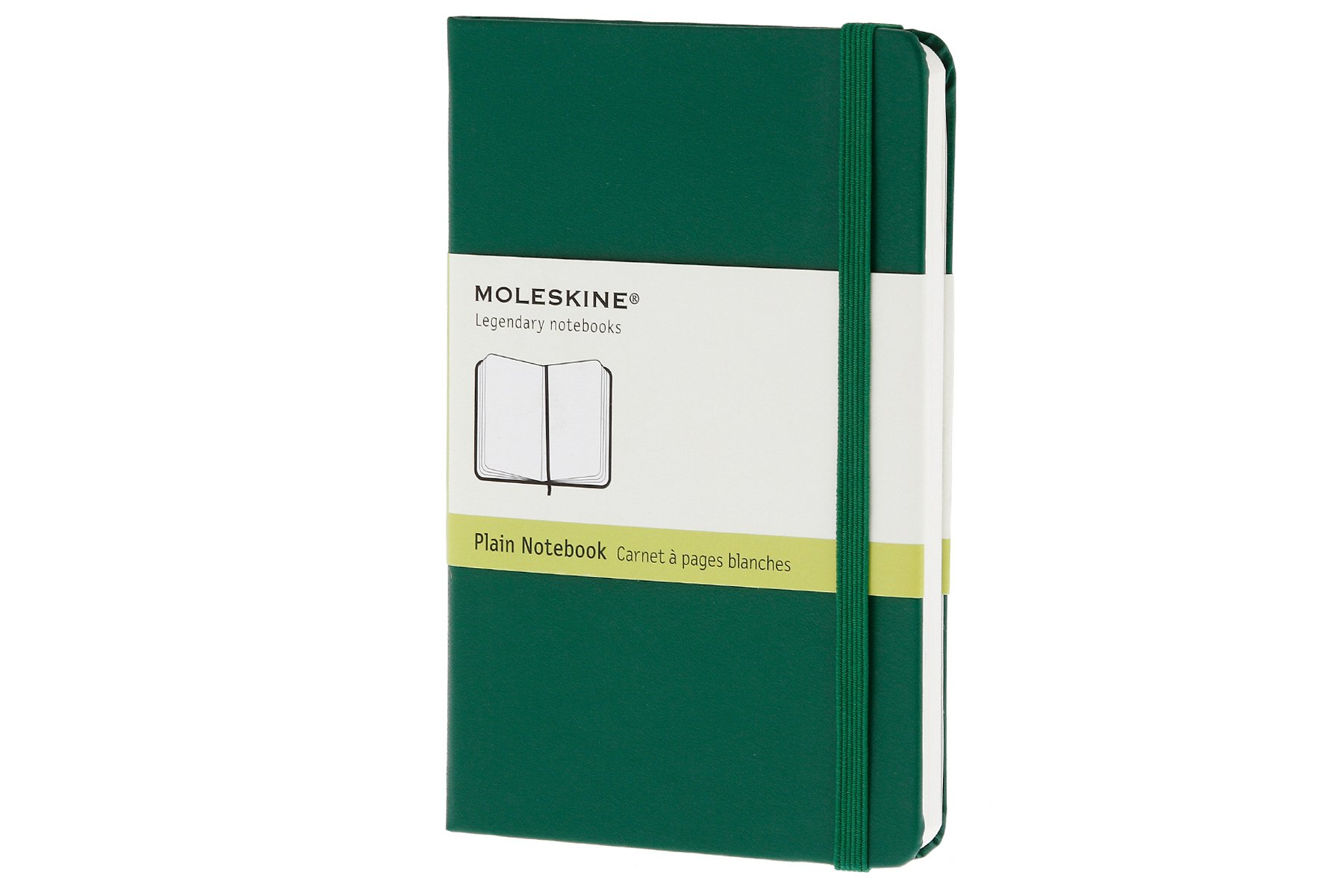 Moleskine Classic Notebook Pocket Willow