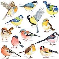 DECOWALL DS-8038 Kleine vogels Kinderen muurstickers Schil en plak Afneembaar baby Kinderkamer babykamer Kinderkamer…