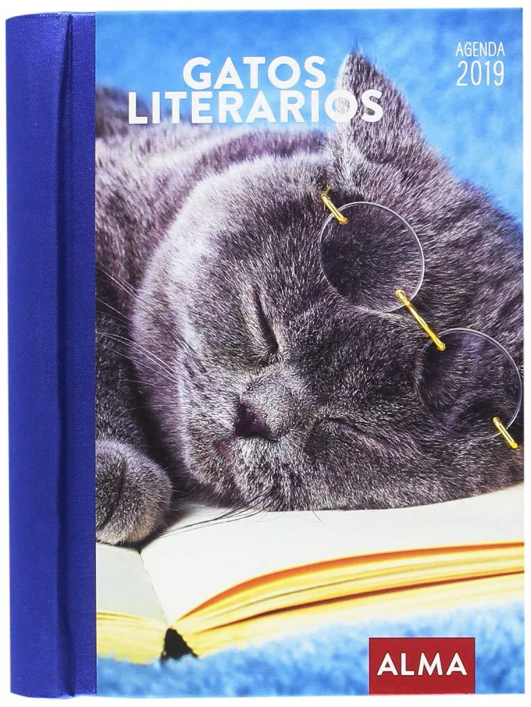 Agenda 2019. Gatos literarios: Vv.Aa: Amazon.es: Oficina y ...