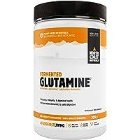 North Coast Naturals I Fermented Glutamine I 300 g I Unflavored
