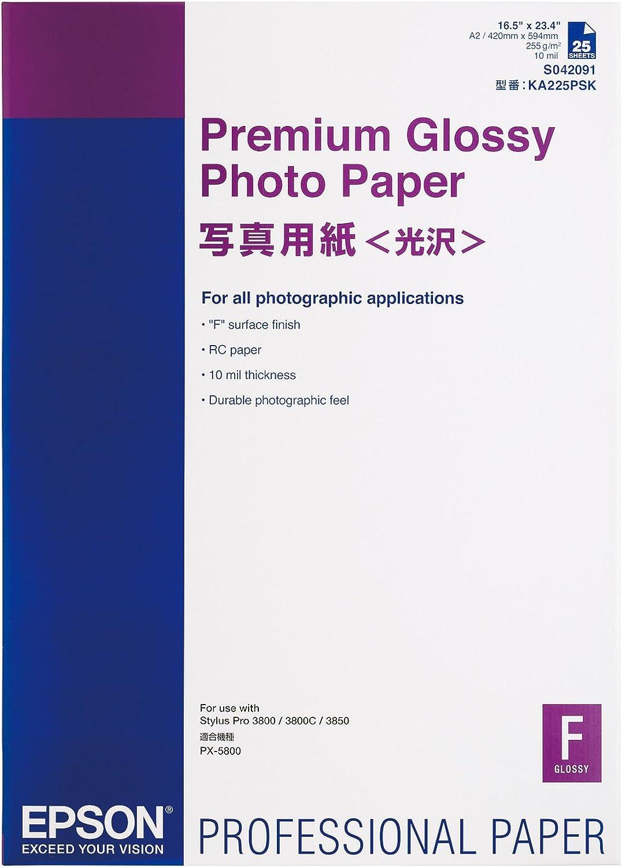 Epson C13S042091 Premium Glossy - Papel fotográfico 255g / m2 A2 ...