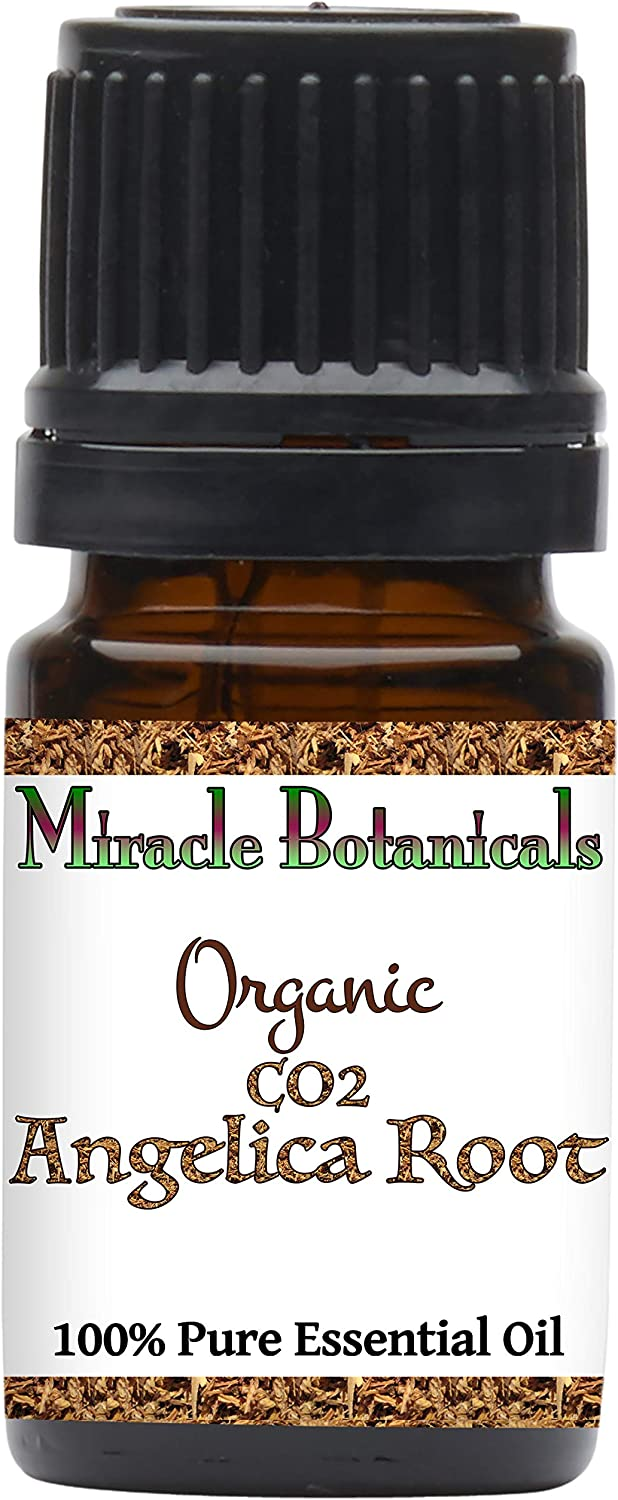 Miracle Botanicals Organic Angelica Root Essential Oil - CO2 Extracted - 100% Pure Angelica Archangelica - Therapeutic Grade (5ML)