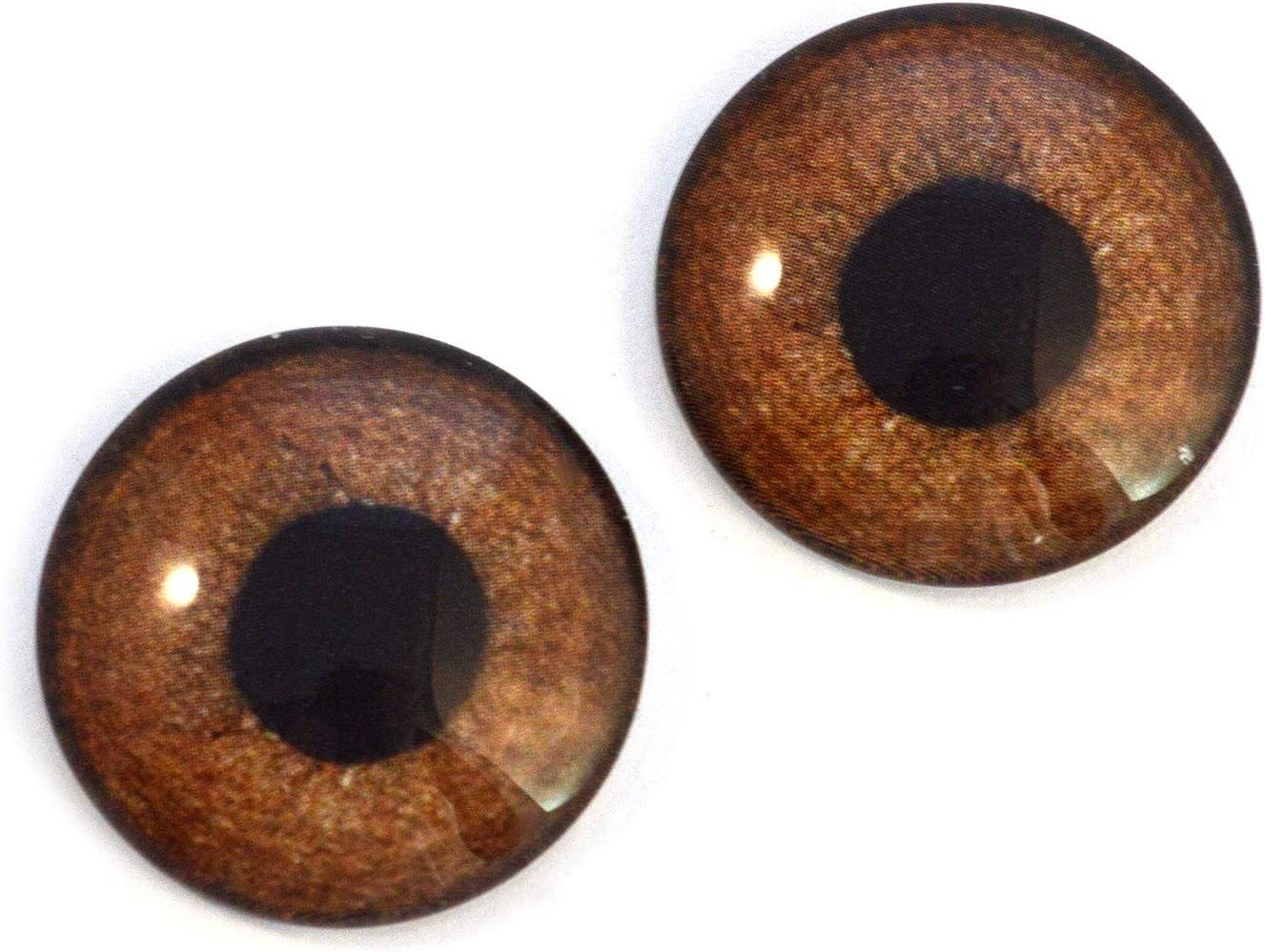 Jewelry Making Cabochons Brown Griffon Bird Glass Eyes Realistic Foul Animal Pair for Art Doll Parts 6mm Sculpture and More Prop Taxidermy Supplies Mask Fursuit