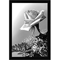Americanflat 12x18 Poster Frame in Black with Polished Plexiglass - Horizontal and Vertical Formats with Included…