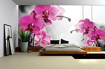 71zXMbqBUXL. SX355  - Orchideen Tapete
