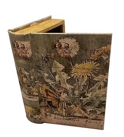 Vintage Fairy Book Box Leather Over Wood Secret Storage Box Fairy Keepsake  sc 1 st  Amazon.com & Amazon.com: Vintage Fairy Book Box Leather Over Wood Secret Storage ...