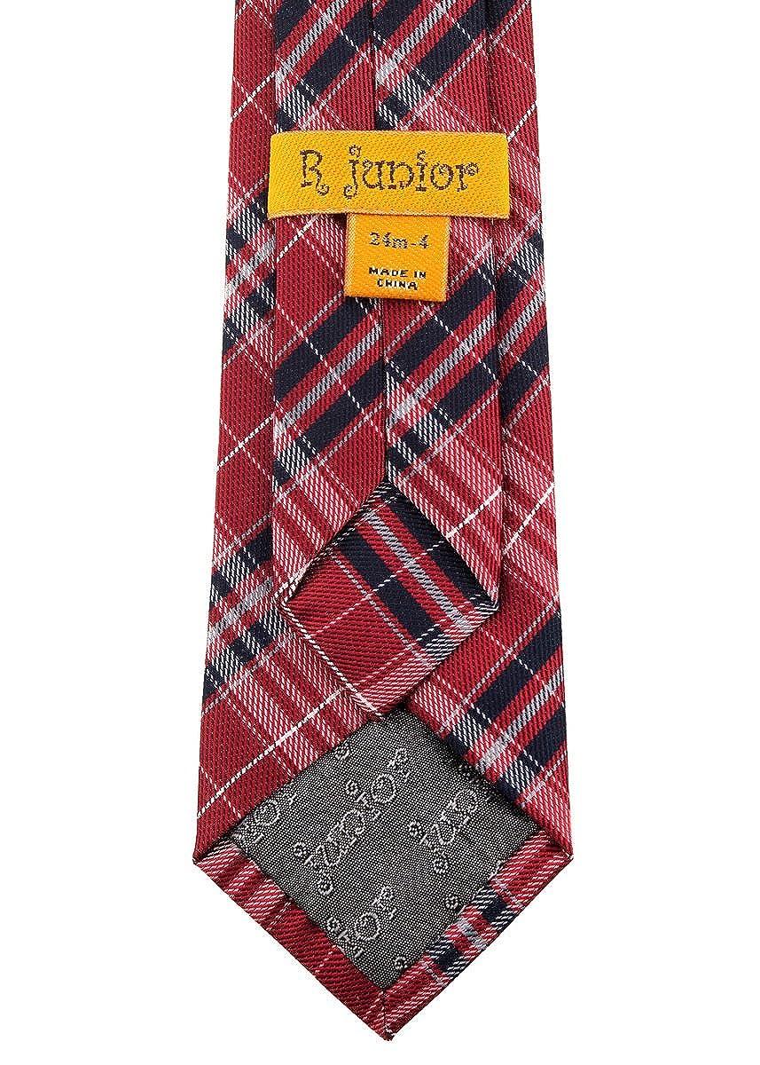 Retreez Stylish Plaid Checkered Woven Microfiber Pre-tied Boys Tie