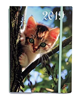 2019 Weekly by Day Planner Calendar Journal, 8.25 X 6 Inches, Laminated Cover (Kaleidoscope)