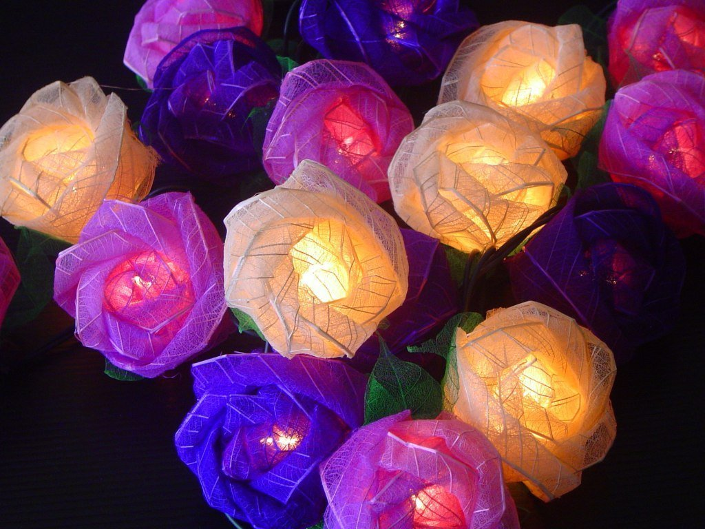 Old English Purple Mixed Colour Rose Fairy Light String Amazonco Wiring Garden Lights Uk Kitchen Home