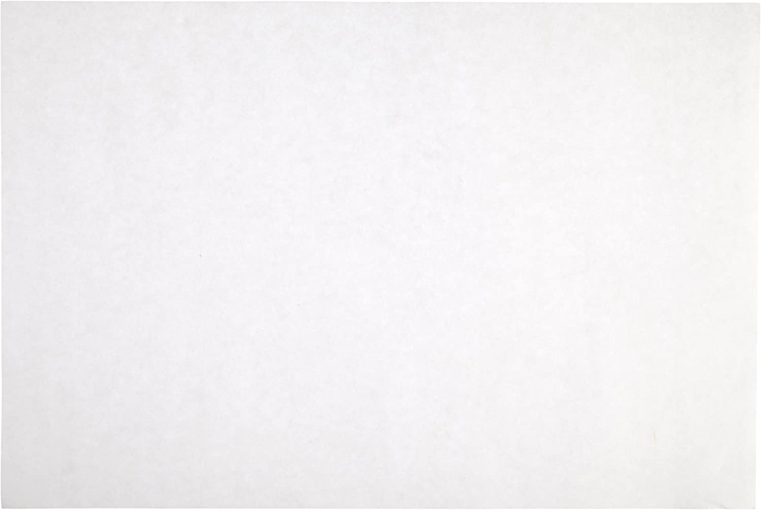 Sax Sulphite Drawing Paper 80 lb Pack of 500-053943 Extra-White 9 x 12 Inches 2 Sets