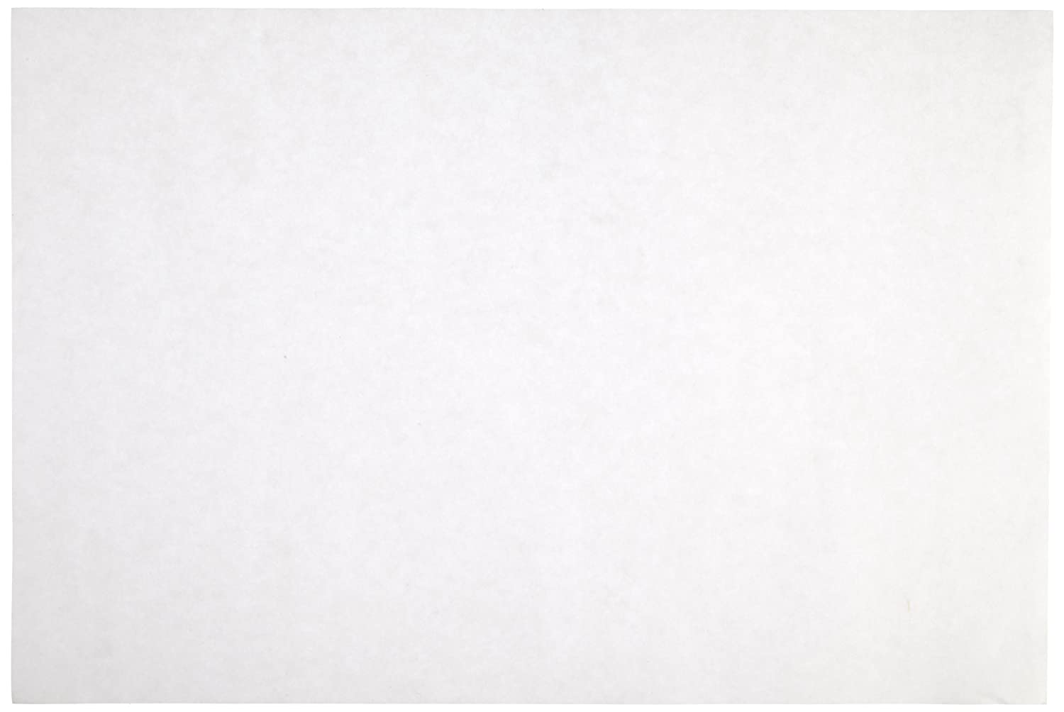 Sax Drawing Paper - 80 pound - 9 x 12 inches - 500 Sheets - White 053943