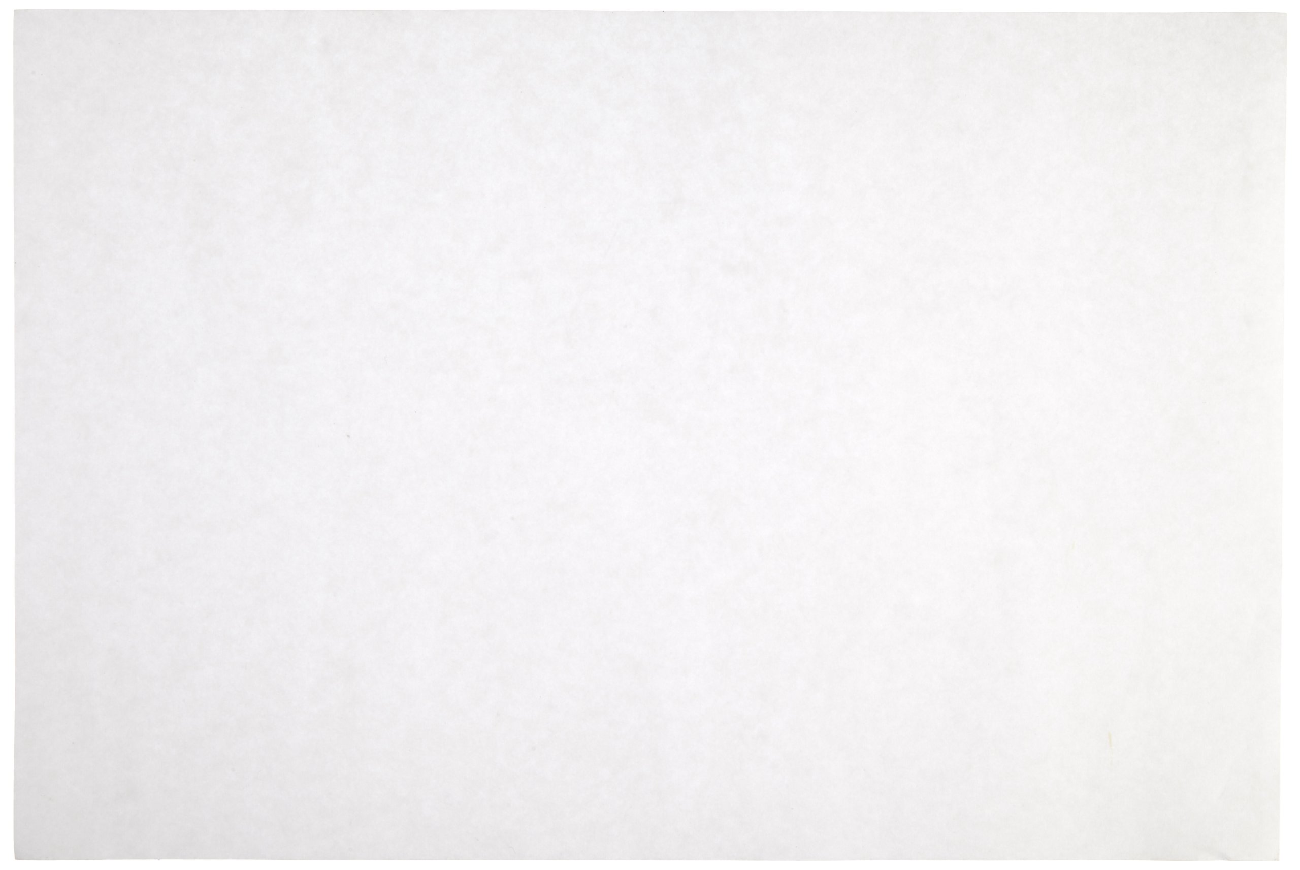 Sax Sulphite Drawing Paper, 80 lb, 9 x 12 Inches, Extra-White, Pack of 500 - 053943 by Sax