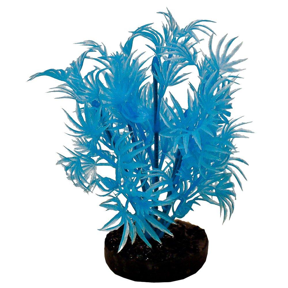 bluee Ribbon Pet Products 30539 Neon bluee color Burst Plant Dragon Leaf