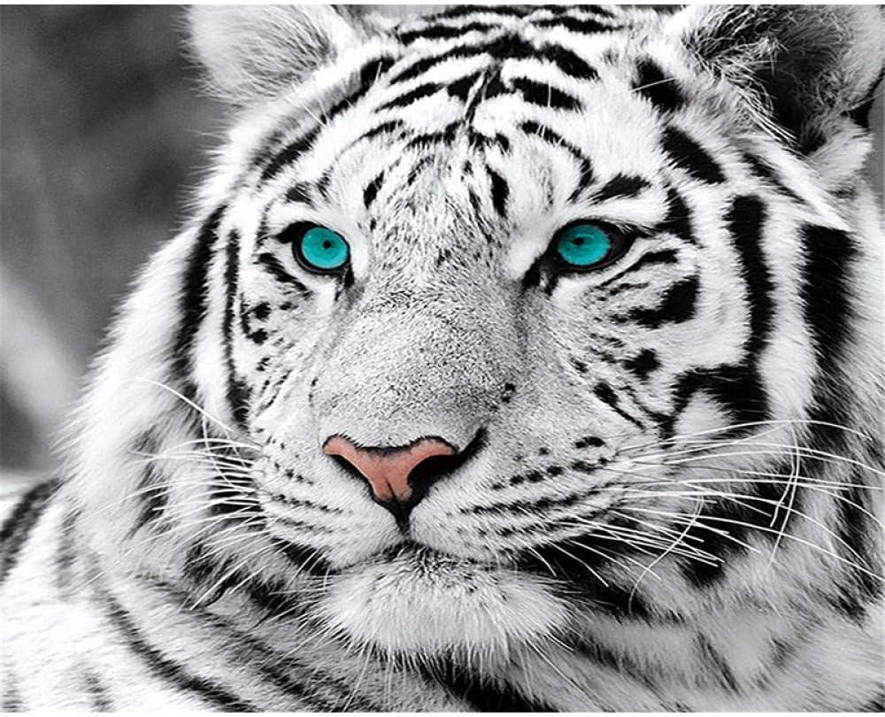 Pintar por Numeros para Adultos Niños Tigre blanco y negro Pintura por Números con Pinceles y Pinturas DIY Pintura al óleo Decoraciones para el Hogar Regalo 40x50cm Sin Marco