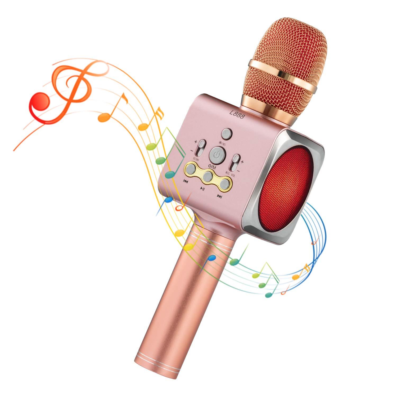 Microphone Sans Fil Karaoké Portable Bluetooth avec 2 Haut-Parleur Bluetooth Intégré,4 en 1 Pour Android & iOS,Karaoké Pour Chanter à La Maison, KTV, Anniversaire de Fête, Enregistrement(Gris foncé) UKpingpin