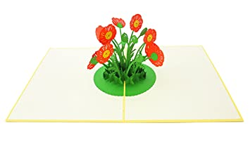Amazon poplife poppy flower patch pop up card 3d card for all poplife poppy flower patch pop up card 3d card for all occasions get well mightylinksfo