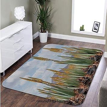 Amazon.com: Alfombra para plantas, foto de Aloe Vera ...