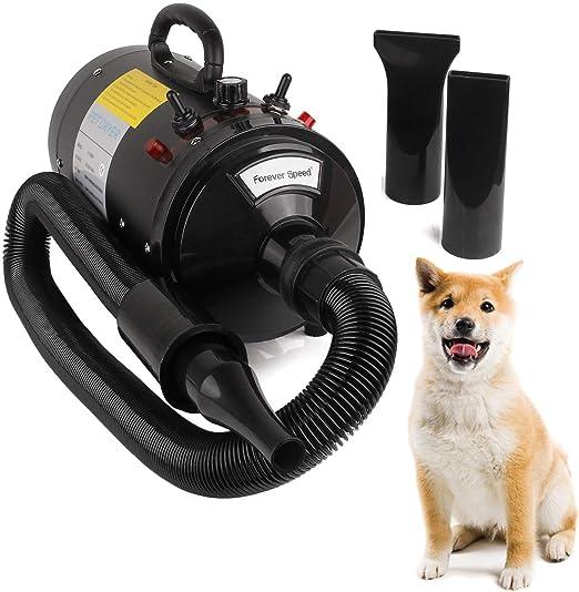 Miafamily Tienda de Mascotas Profesional Eléctrico los Mascotas Secador Soplador Máquina de Alta Potencia Mute Secador de Pelo Cabello Dorado Peluche Calentador 2400W: Amazon.es: Productos para mascotas