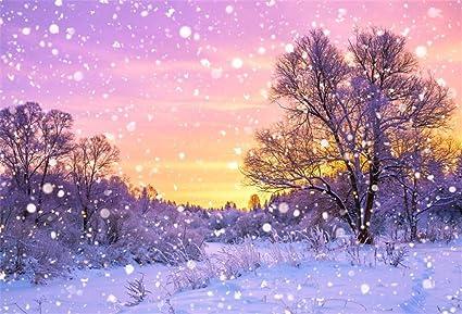Snowing Christmas Scene.Amazon Com Aofoto 5x3ft Snowfall Scene Backdrop Snowing